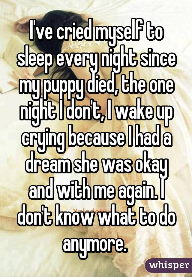 I've cried myself to sleep every night since my puppy died, the one night I don't, I wake up crying because I had a dream she was okay and with me again. I don't know what to do anymore.