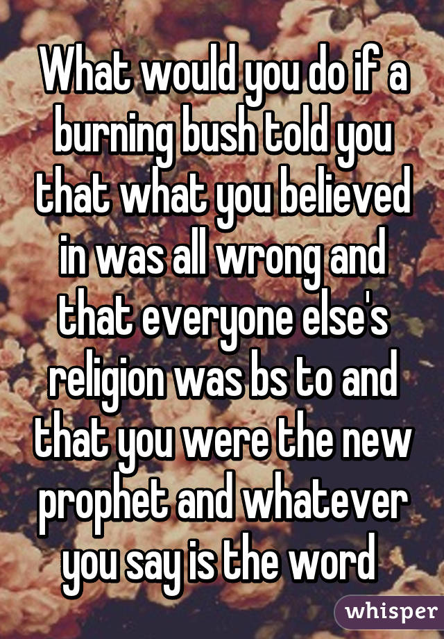 What would you do if a burning bush told you that what you believed in was all wrong and that everyone else's religion was bs to and that you were the new prophet and whatever you say is the word