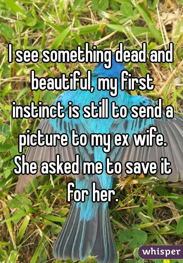I see something dead and beautiful, my first instinct is still to send a picture to my ex wife. She asked me to save it for her.