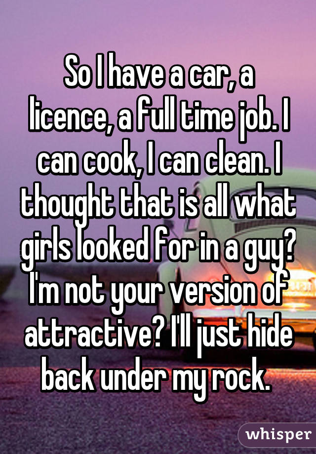 So I have a car, a licence, a full time job. I can cook, I can clean. I thought that is all what girls looked for in a guy? I'm not your version of attractive? I'll just hide back under my rock.