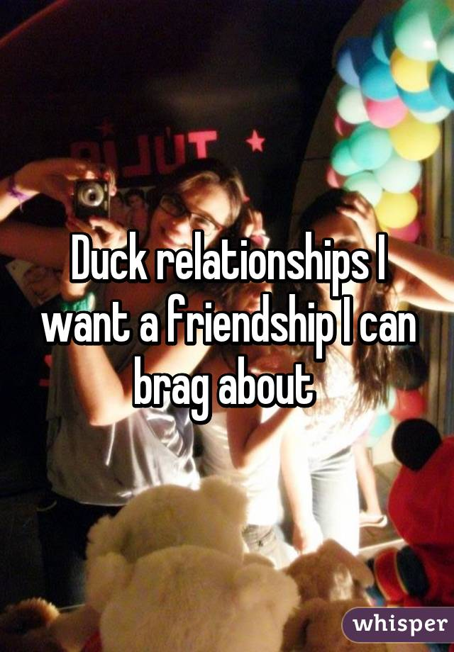 Duck relationships I want a friendship I can brag about