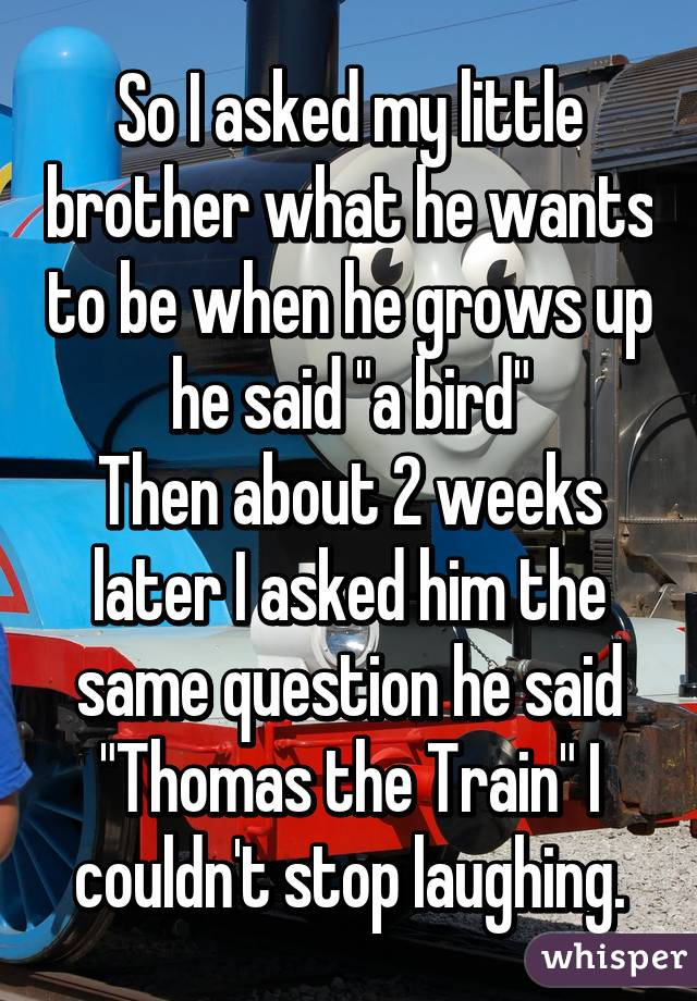 """So I asked my little brother what he wants to be when he grows up he said """"a bird"""" Then about 2 weeks later I asked him the same question he said """"Thomas the Train"""" I couldn't stop laughing."""