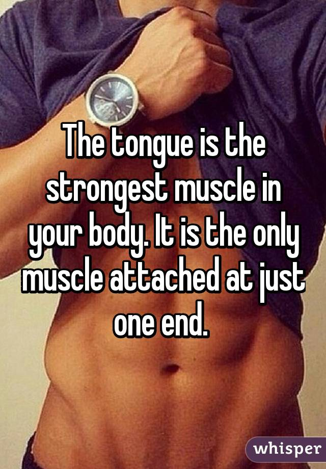 tongue is the strongest muscle in your body. it is the only muscle, Cephalic Vein