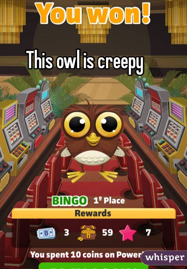 This owl is creepy