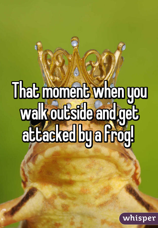 That moment when you walk outside and get attacked by a frog!