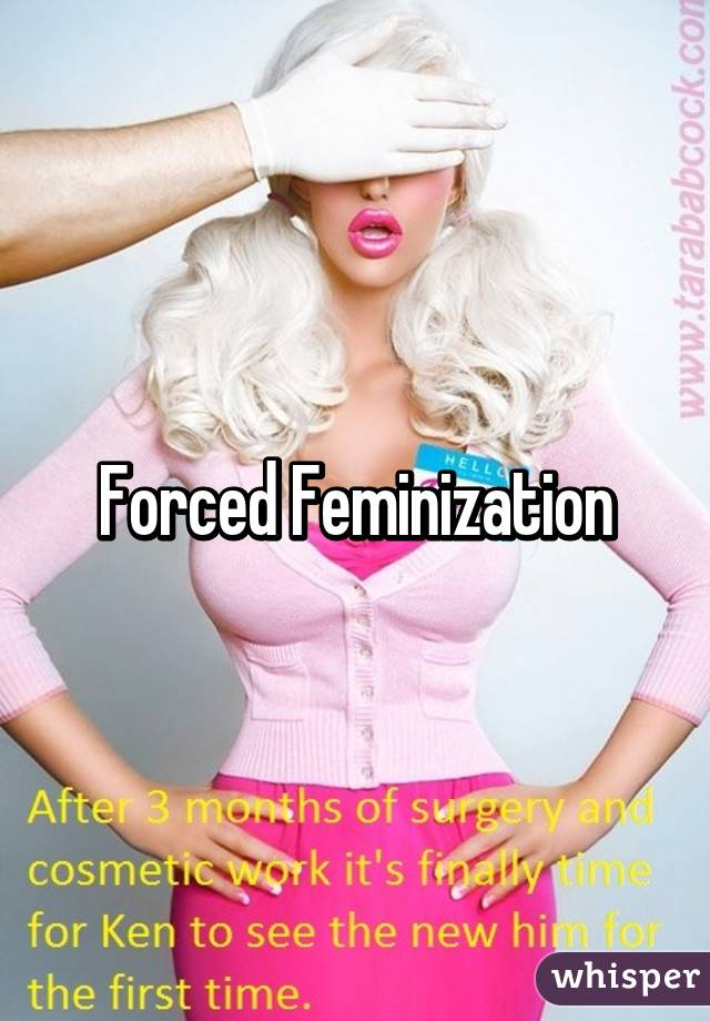 Feminization Sex Stories 21