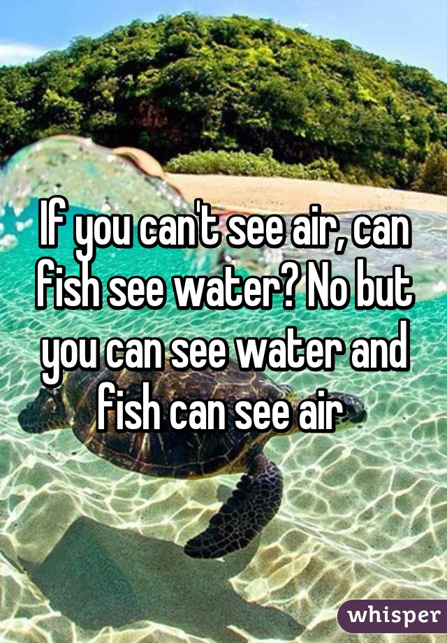 If you can 39 t see air can fish see water no but you can for Can fish see water