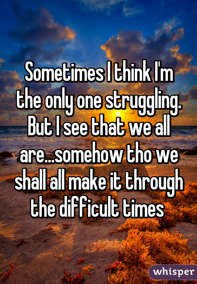 Sometimes I think I'm the only one struggling. But I see that we all are...somehow tho we shall all make it through the difficult times