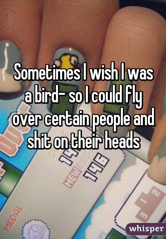 Sometimes I wish I was a bird- so I could fly over certain people and shit on their heads