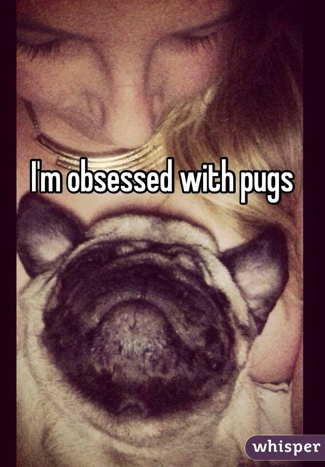 I'm obsessed with pugs