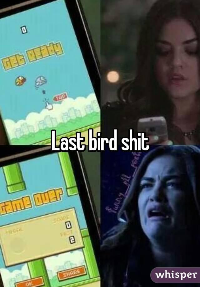 Last bird shit