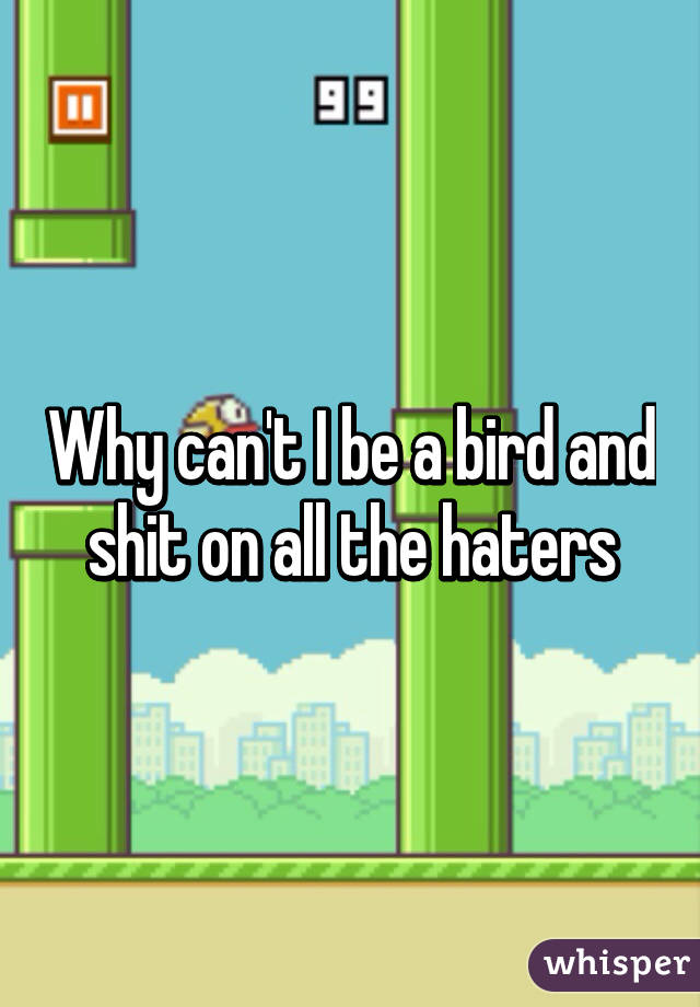 Why can't I be a bird and shit on all the haters