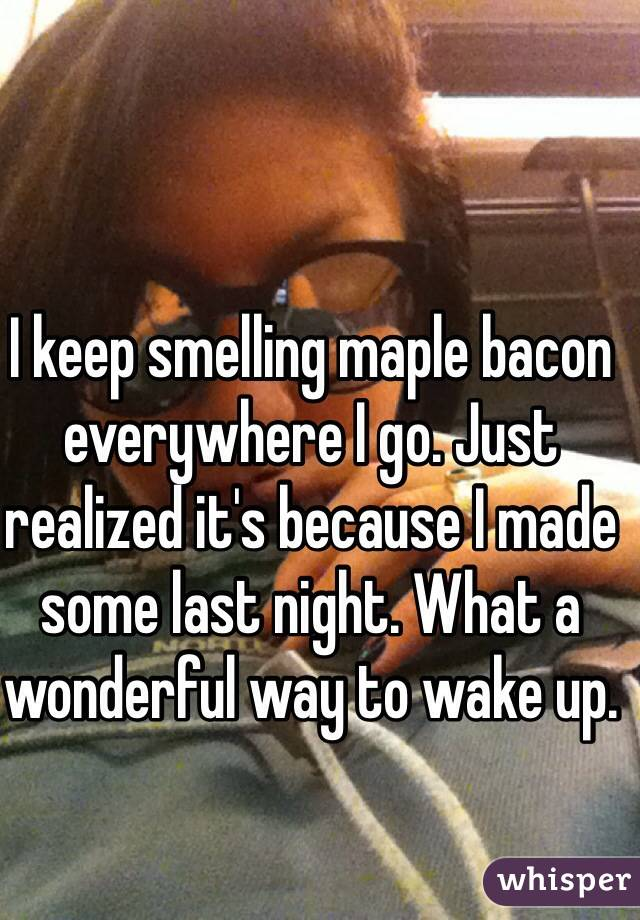 I keep smelling maple bacon everywhere I go. Just realized it's because I made some last night. What a wonderful way to wake up.