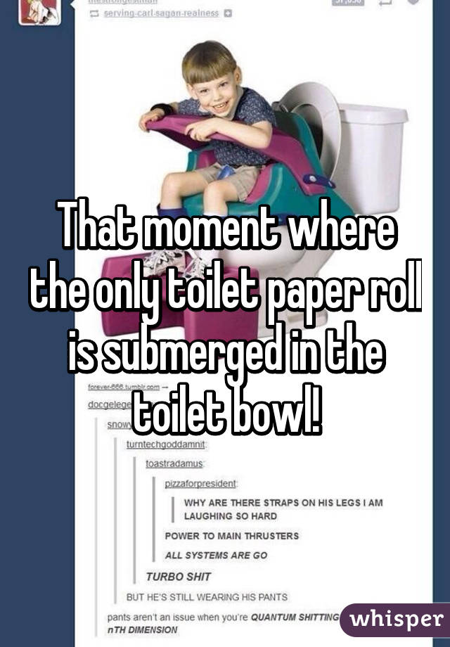That moment where the only toilet paper roll is submerged in the toilet bowl!