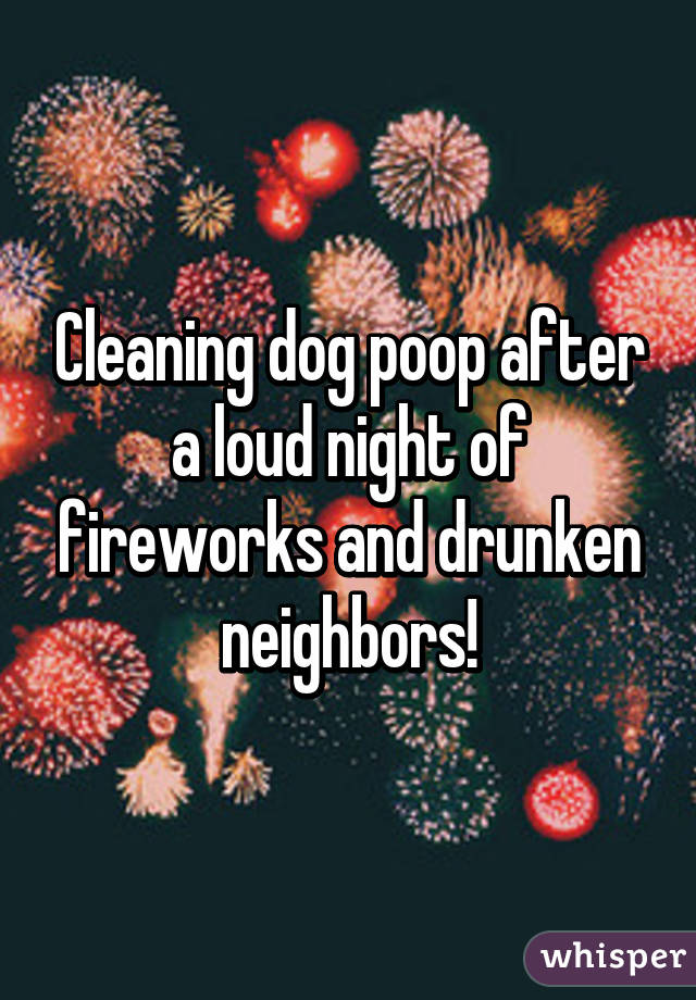 Cleaning dog poop after a loud night of fireworks and drunken neighbors!