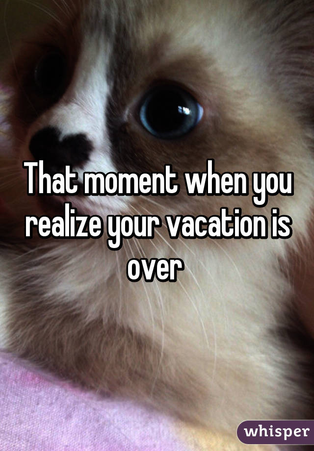 That Moment When Ghetto Redhot Yourspecial Cousin Gets An: That Moment When You Realize Your Vacation Is Over