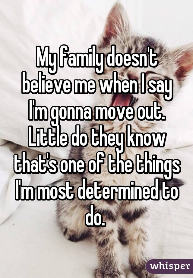 My family doesn't believe me when I say I'm gonna move out. Little do they know that's one of the things I'm most determined to do.