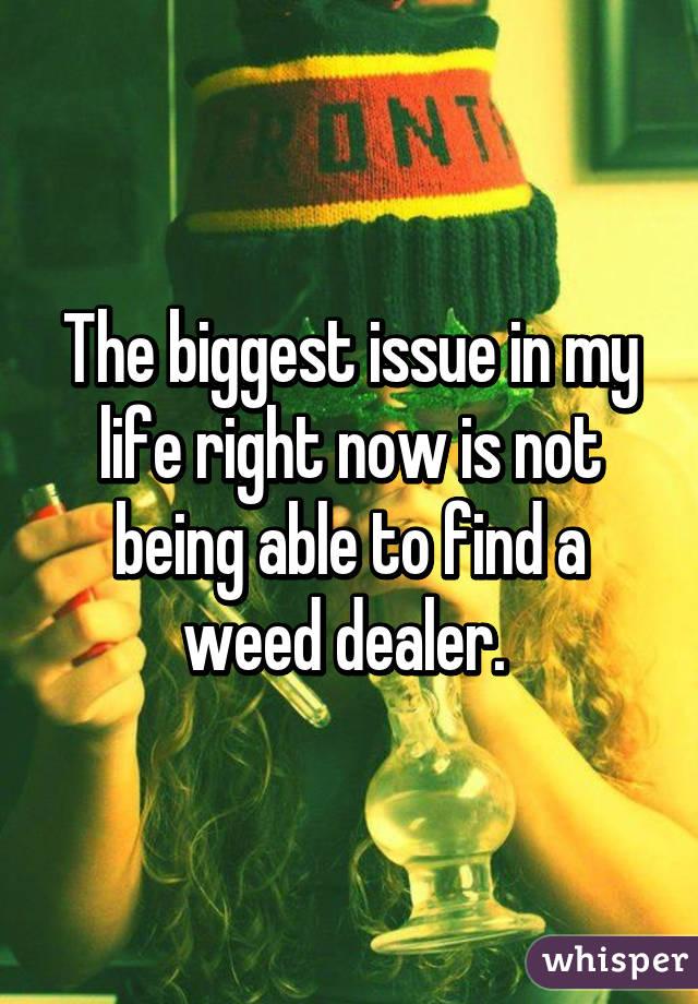 051a62a2eb2bef991663098b73c18567f630dc wm Could Weed Be In Liquor Stores Soon?
