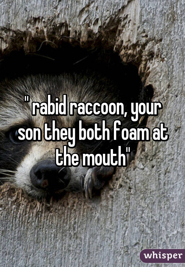 """ rabid raccoon, your son they both foam at the mouth"" Raccoon With Rabies Foaming"