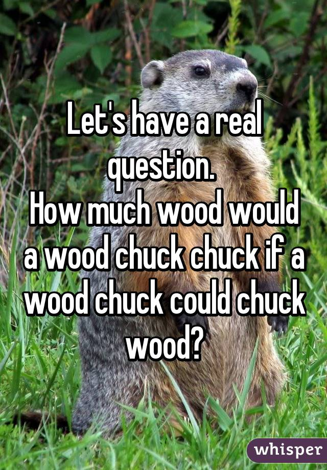 how much would a woodchuck could chuck wood - wood boring ...