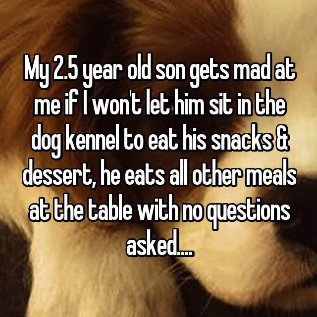 My 2.5 year old son gets mad at me if I won't let him sit in the dog kennel to eat his snacks & dessert, he eats all other meals at the table with no questions asked....