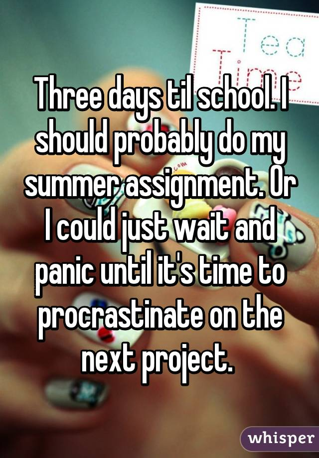 Should i do my summer assignment hire purchase system essay