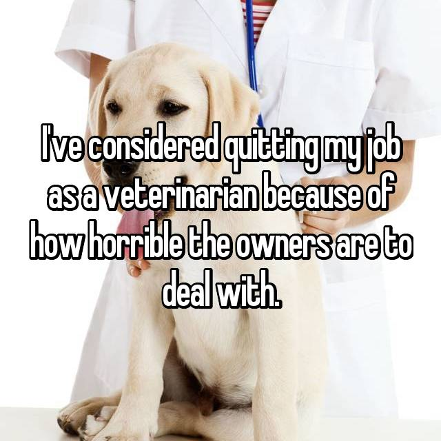 I've considered quitting my job as a veterinarian because of how horrible the owners are to deal with.