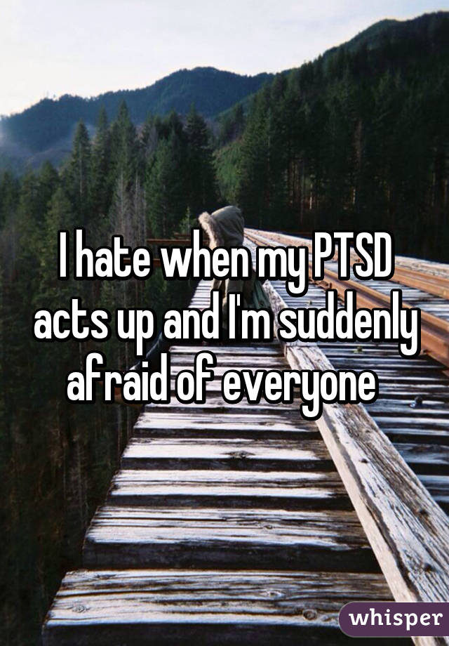 I hate when my PTSD acts up and I