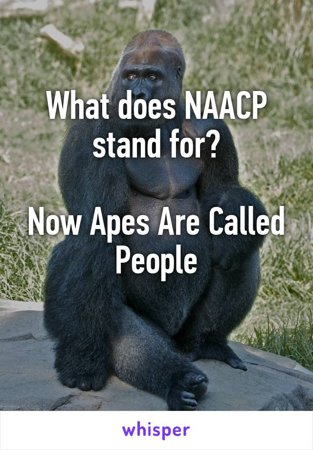 What Does The Naacp Stand For : Axiomatica.org