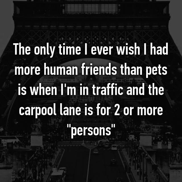 "The only time I ever wish I had more human friends than pets is when I'm in traffic and the carpool lane is for 2 or more ""persons"""