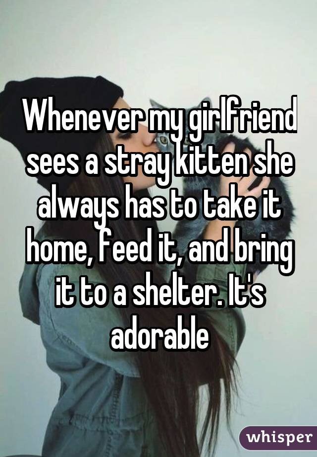 Whenever my girlfriend sees a stray kitten she always has to take it home, feed it, and bring it to a shelter. It