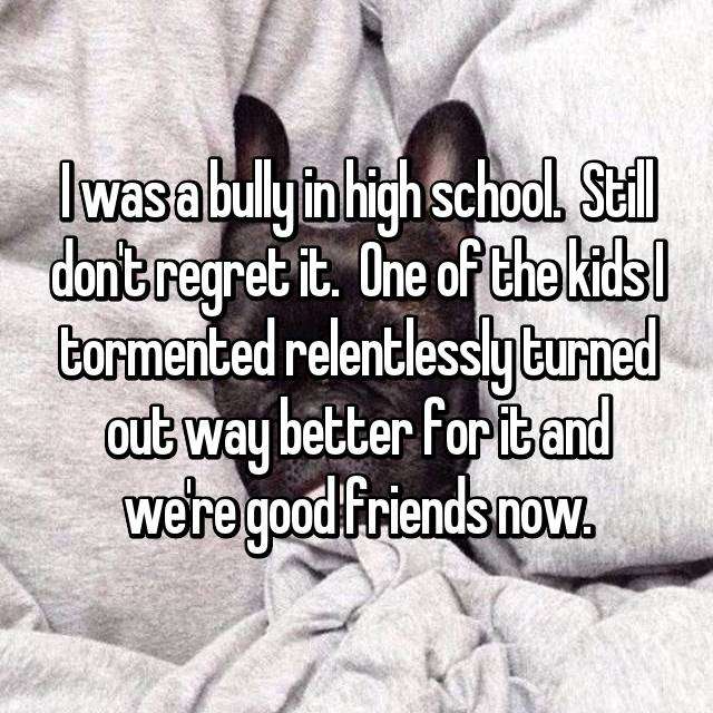 I was a bully in high school.  Still don't regret it.  One of the kids I tormented relentlessly turned out way better for it and we're good friends now.