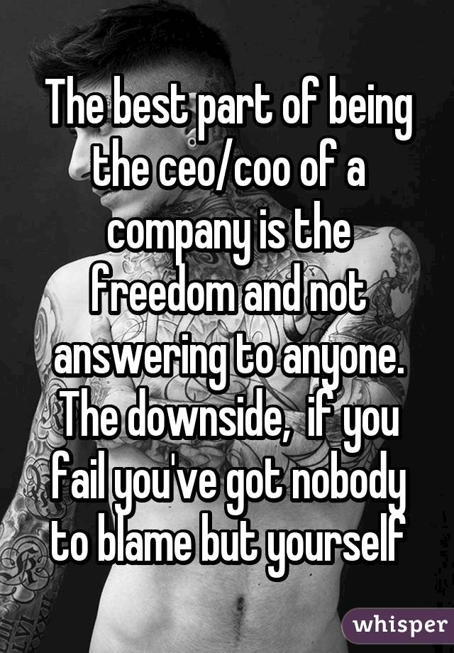 The best part of being the ceo/coo of a company is the freedom and not answering to anyone. The downside, if you fail you