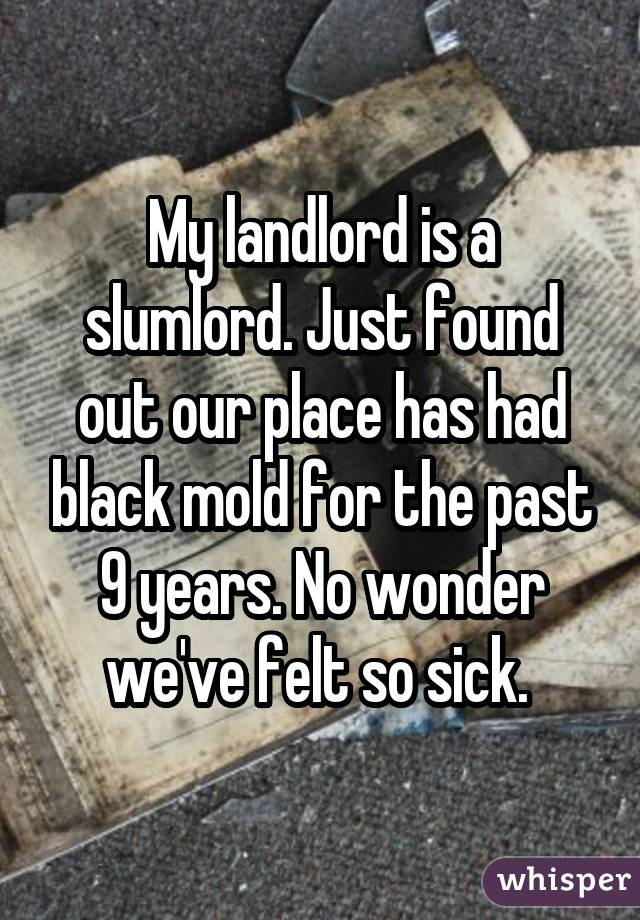My landlord is a slumlord. Just found out our place has had black mold for the past 9 years. No wonder we