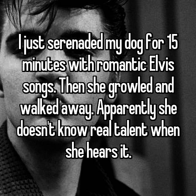 I just serenaded my dog for 15 minutes with romantic Elvis songs. Then she growled and walked away. Apparently she doesn't know real talent when she hears it.