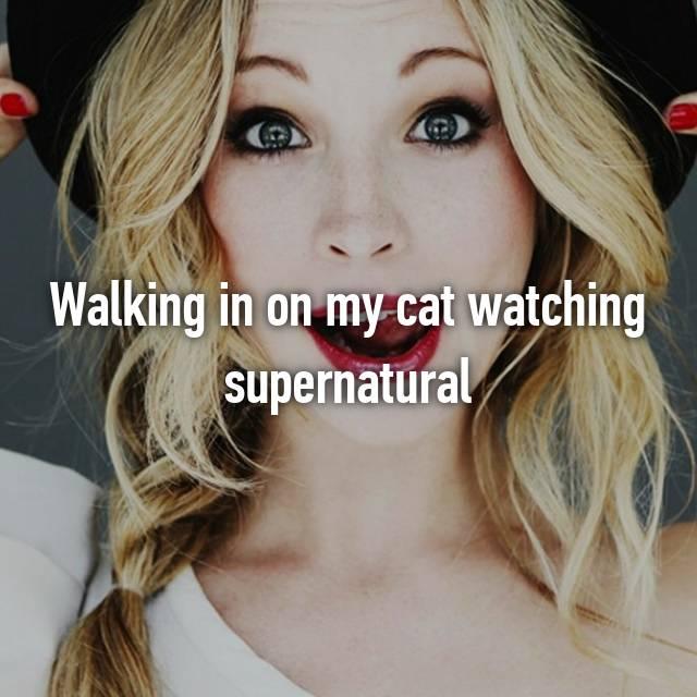Walking in on my cat watching supernatural
