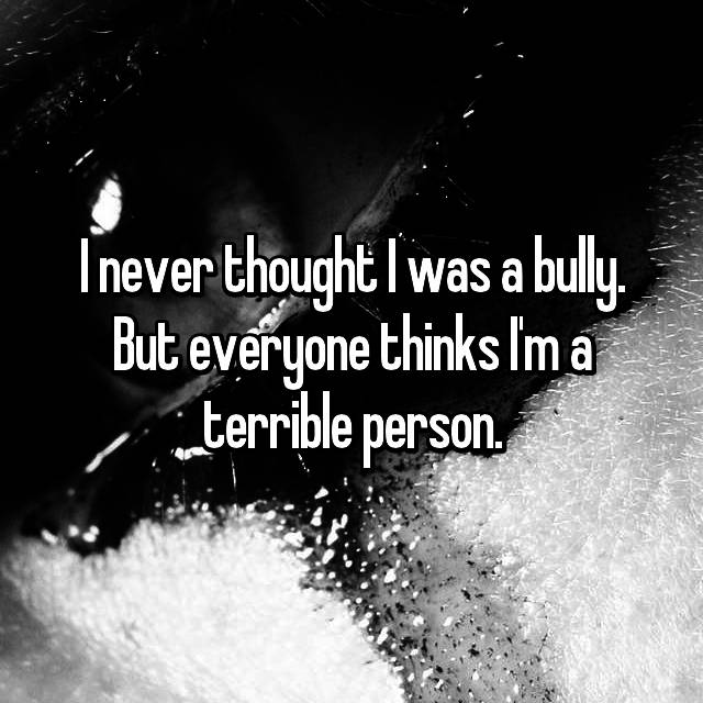 I never thought I was a bully. But everyone thinks I'm a terrible person.