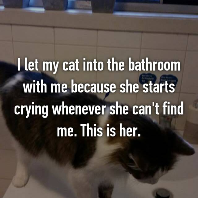 I let my cat into the bathroom with me because she starts crying whenever she can't find me. This is her.