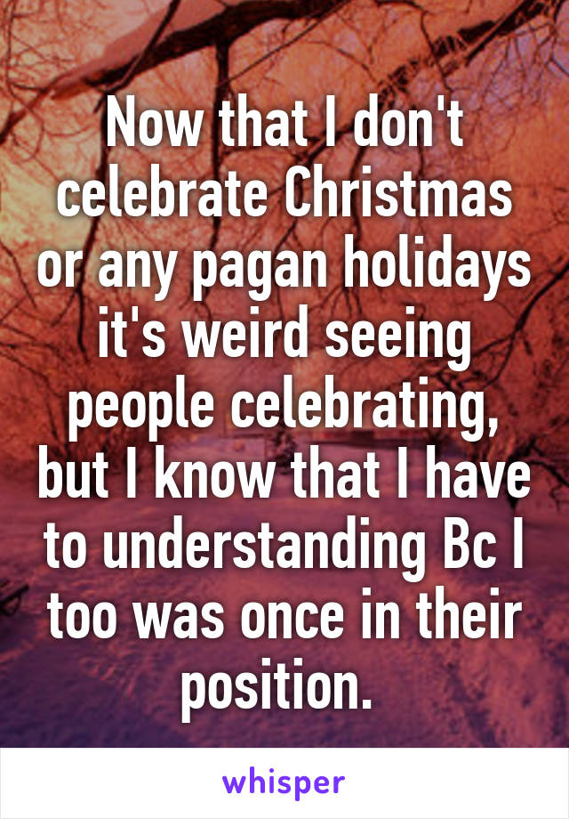 that I don't celebrate Christmas or any pagan holidays it's weird ...