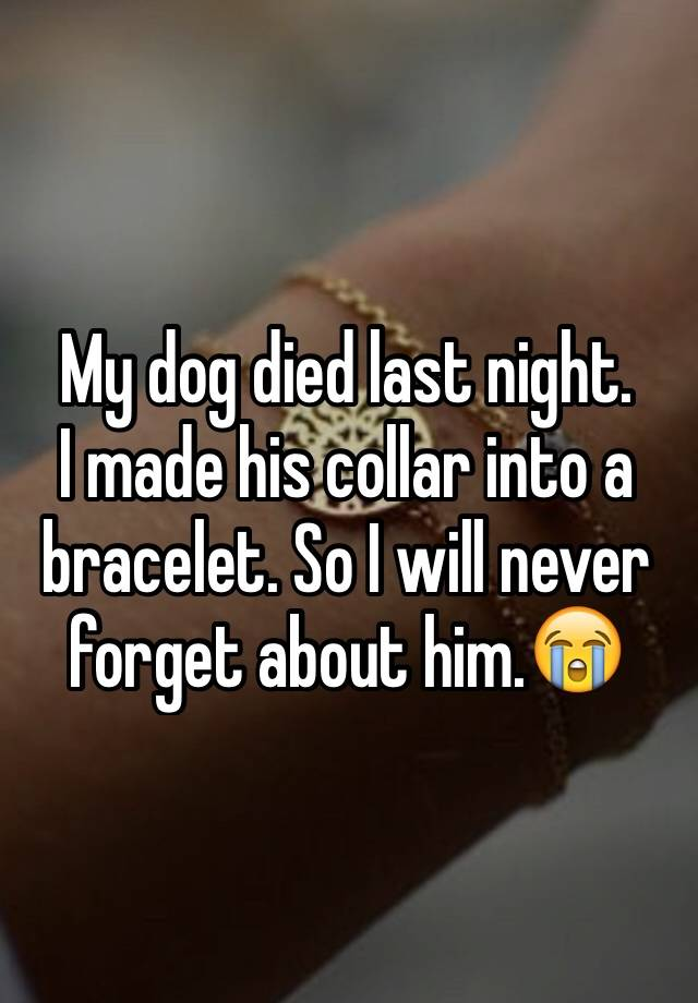 My Dog Died Last Night. I Made His Collar Into A Bracelet. So I