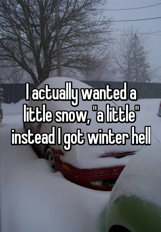 "I actually wanted a little snow, ""a little"" instead I got winter hell"