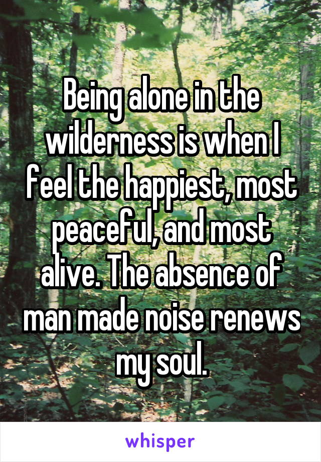 Being alone in the wilderness is when I feel the happiest, most peaceful, and most alive. The absence of man made noise renews my soul.