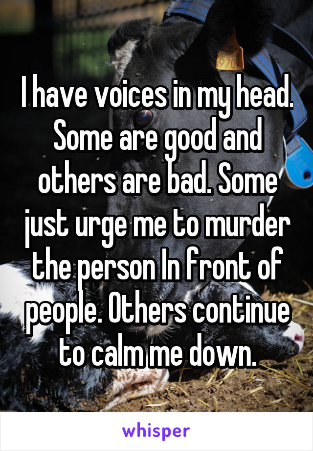 I have voices in my head. Some are good and others are bad. Some just urge me to murder the person In front of people. Others continue to calm me down.