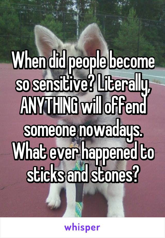 When did people become so sensitive? Literally, ANYTHING will offend someone nowadays. What ever happened to sticks and stones?