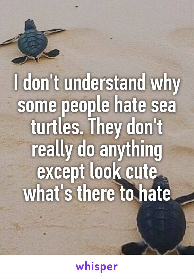 I don't understand why some people hate sea turtles. They don't really do anything except look cute what's there to hate