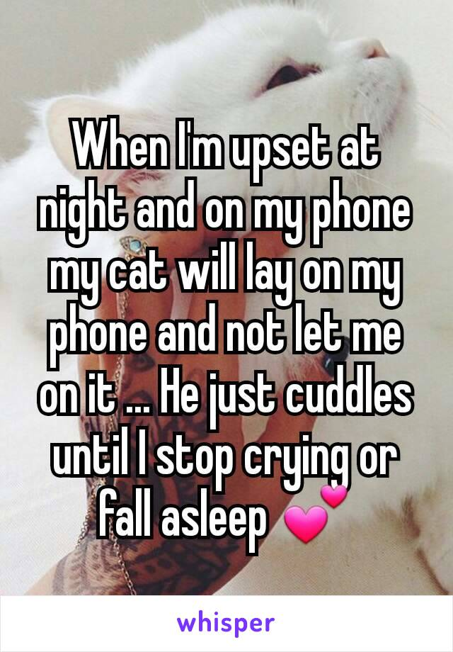 When I'm upset at night and on my phone my cat will lay on my phone and not let me on it ... He just cuddles until I stop crying or fall asleep 💕