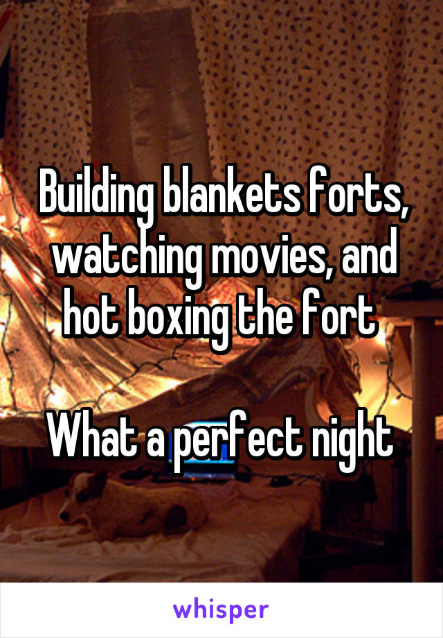Building blankets forts, watching movies, and hot boxing the fort   What a perfect night