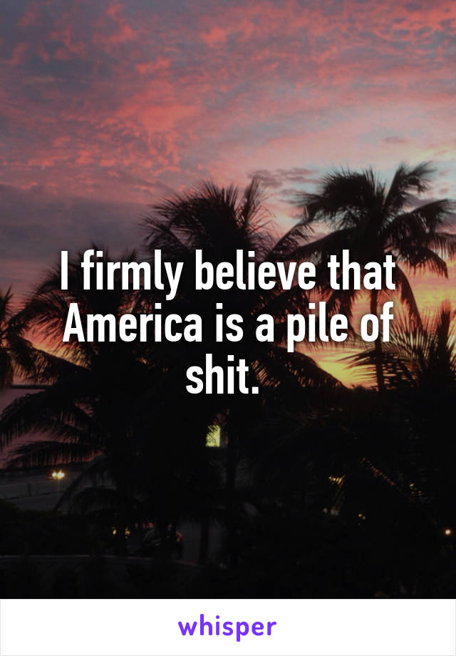 I firmly believe that America is a pile of shit.