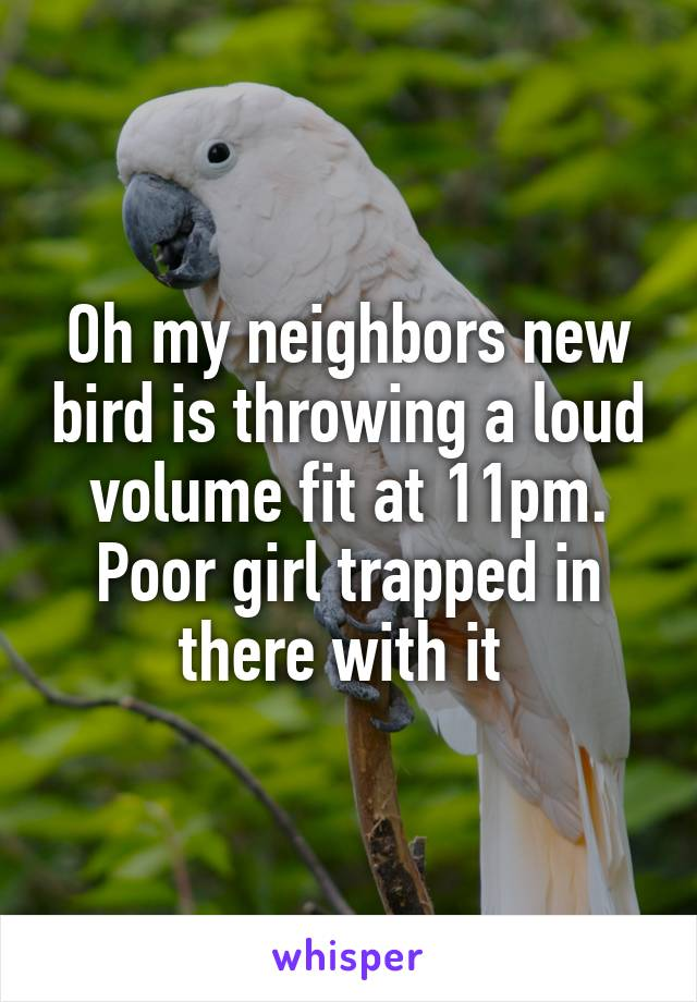 Oh my neighbors new bird is throwing a loud volume fit at 11pm. Poor girl trapped in there with it