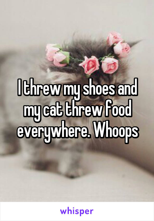 I threw my shoes and my cat threw food everywhere. Whoops